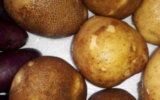 """Картофель """"Киви"""": описание сорта, фото, отзывы"""