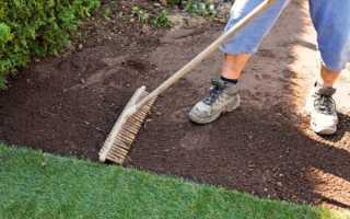 Когда сеять газонную траву – весной или осенью