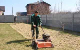 Уход за газоном весной: что делать после зимы