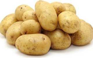Картофель Гала: описание сорта, фото, отзывы садоводов