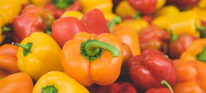 Удобрения для перца в открытом грунте