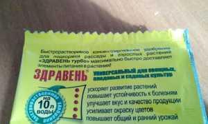 Здравень Турбо Универсальный: инструкция, применение для томатов и огурцов