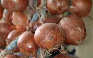 Луковая шелуха как удобрение: для каких растений подойдет