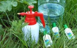 Как избавиться от сорняков и травы по современному навсегда