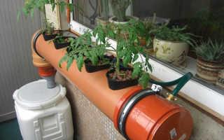 Гидропоника: оборудование для выращивания овощей, зелени и цветов
