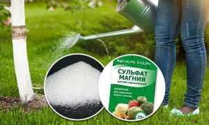 Сульфат магния как удобрение: инструкция по применению, советы