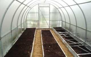 Как вырастить баклажаны в теплице из поликарбоната: посадка, уход, подкормка