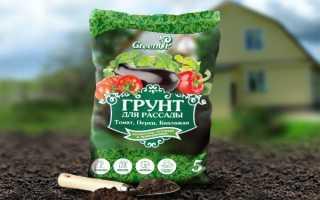 Как правильно выбрать грунт для посадки томатов