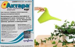 Актара: инструкция по применению для комнатных растений, отзывы