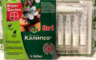"Инсектицид ""Калипсо"": инструкция по применению, характеристика"